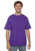 Hanes 5180 Adult Cotton Beefy-T